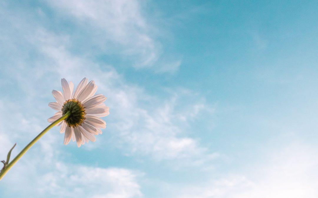 Jarný budíček: O nádeji